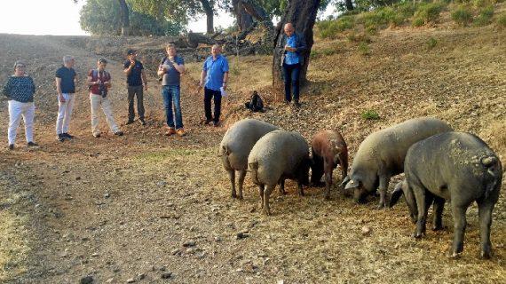 La prensa alemana descubre la naturaleza y la gastronomía de la provincia de Huelva