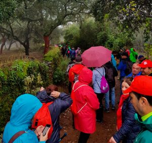A pesar de la lluvia, unos 420 aficionados estuvieron en la Concentración Senderista 'Ciudad de Aracena'.