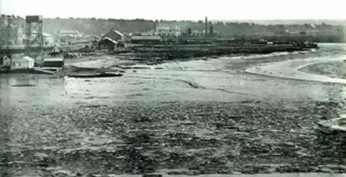 Esteros de Las Metas en la penúltima década del siglo XIX