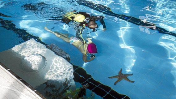 El Polideportivo Andrés Estrada inaugura el solidario Belén Subacuático