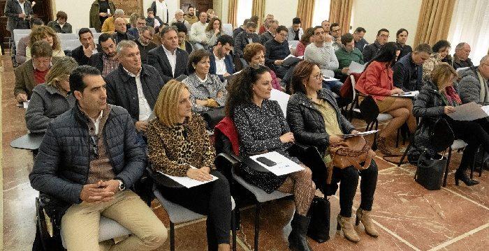 Los alcaldes de la provincia conocen el Plan Extraordinario de Empleo 2019