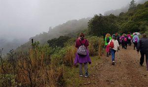 El programa anual de Senderismo, 'Aracena por los caminos', alcanza ya su 14ª edición.