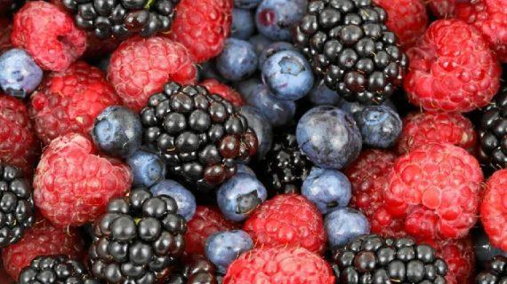 Huelva bate su récord histórico en exportación de frutos rojos al alcanzar los 994 millones