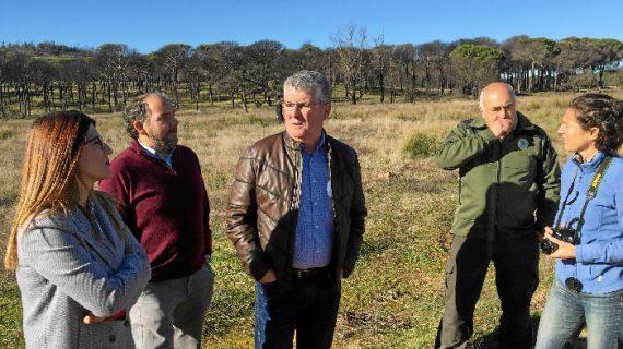 Comienzan los trabajos de restauración en el monte  público Jarrama por el incendio de La Granada de Riotinto