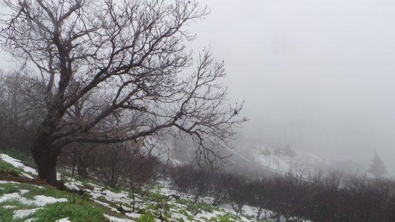 Huelva es la provincia con menos incidencias meteorológicas hasta el momento