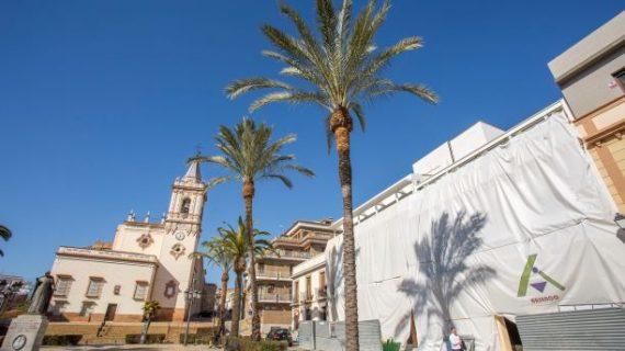 Se reanudan los tratamientos para combatir el picudo rojo en las palmeras en Huelva