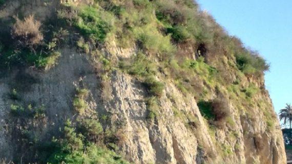 Organizada una recogida de residuos en el cabezo de Mundaka