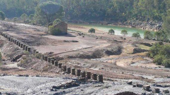 La UHU propone cenizas de biomasa o espuma de azucarera para recuperar suelos contaminados por la actividad minera