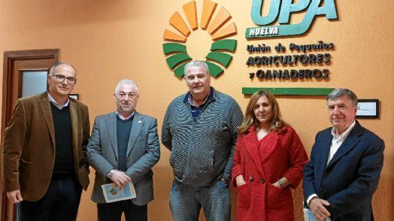 La Plataforma destaca la importancia del túnel de San Silvestre para el sector industrial y turístico de Huelva