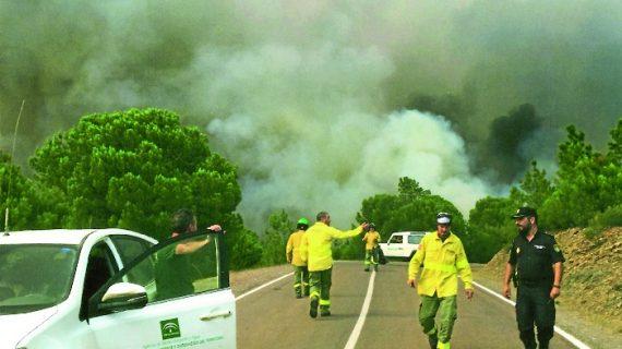 La Policía Autonómica esclarece un incendio forestal en Moguer
