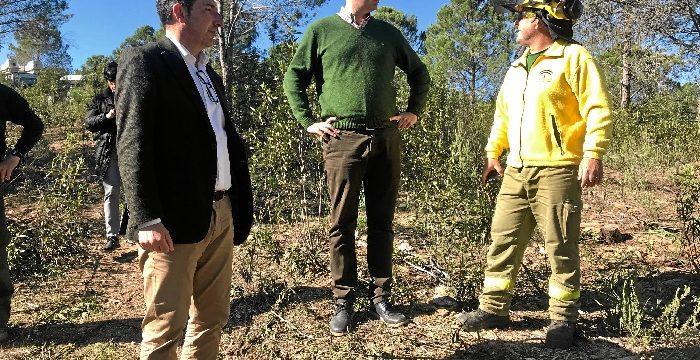 Visita a los trabajos que la Junta de Andalucía realiza en el monte público de Valverde