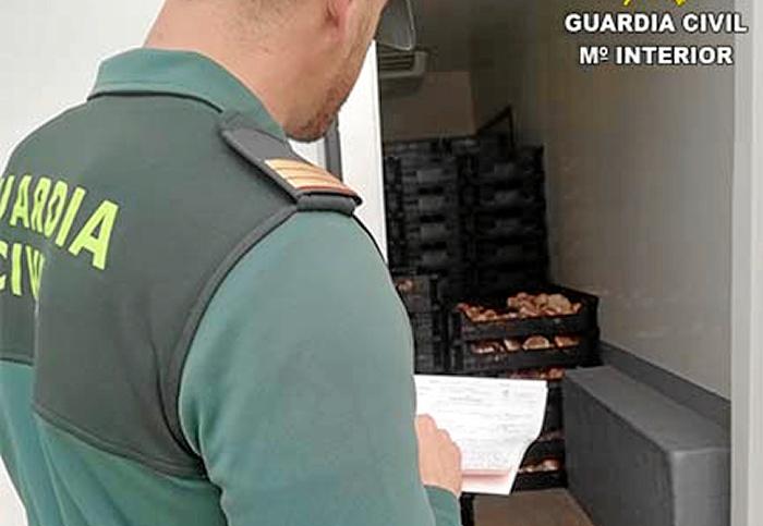 La Guardia Civil interviene una gran cantidad de gurumelos de origen desconocido en Paymogo