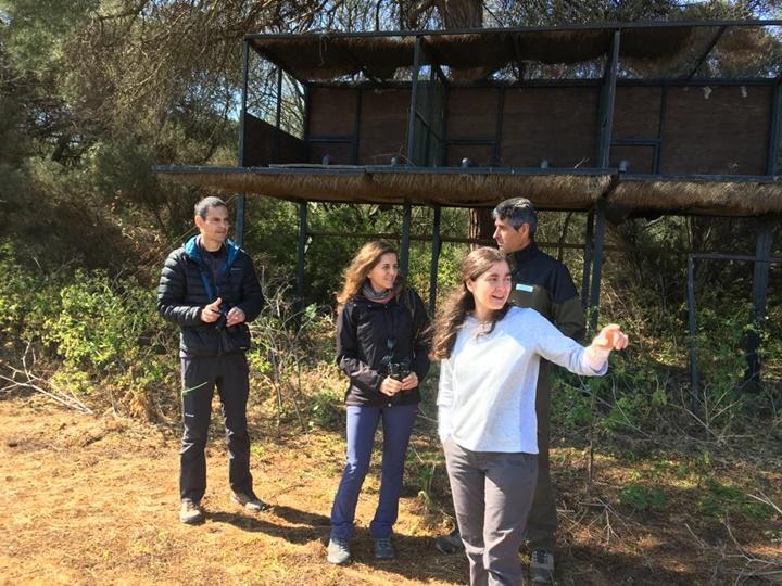La Comunidad Valenciana se interesa por el águila pescadora de Marismas del Odiel