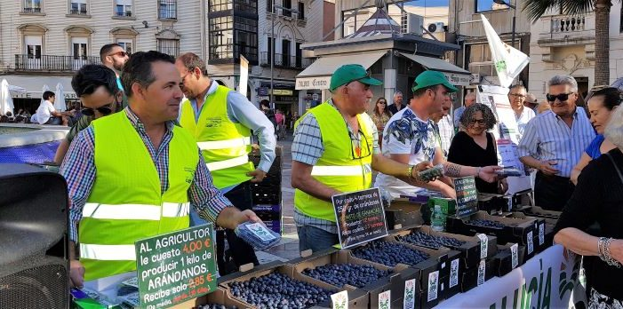 Reparto de arándanos de UPA en Huelva para advertir de los bajos precios