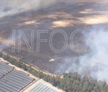 Los trabajadores del Plan Infoca consiguen controlar el incendio en la finca almonteña de Los Mimbrales