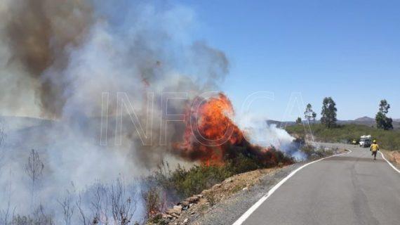 Extinguido el incendio registrado en el paraje 'El Pantano' de Berrocal