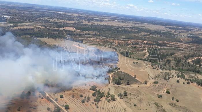 Controlado un incendio forestal en el paraje Dehesa Pan y Ajo en Beas