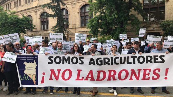Agricultores del Condado reclaman en Sevilla soluciones al problema del agua