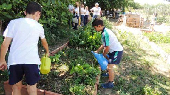 Brillante clausura de curso en los Huertos Escolares del Parque Moret