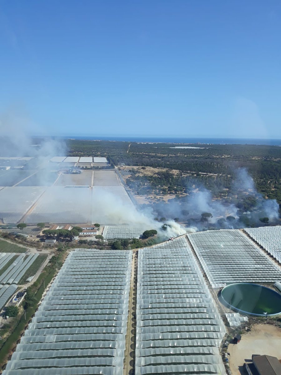 El Plan Infoca controla el incendio en la zona de Las Malvinas, en Moguer