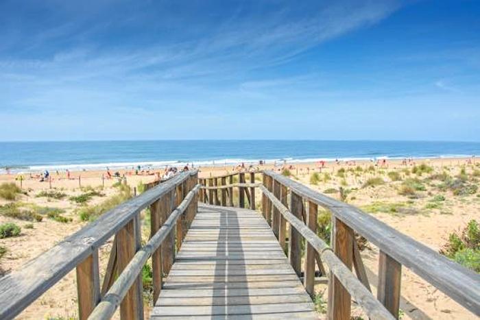 El transporte público, una buena opción para disfrutar este verano de nuestras playas