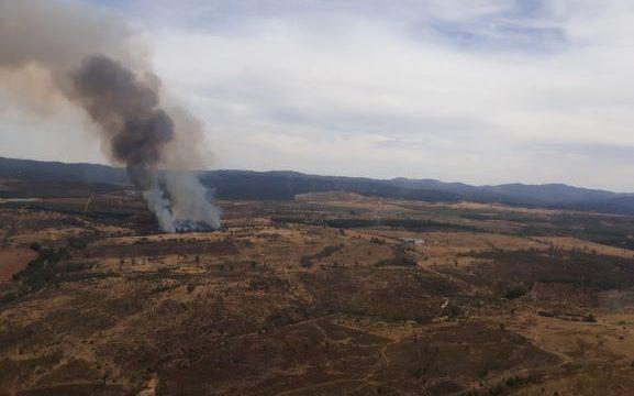 Estabilizado el incendio forestal de Cortegana
