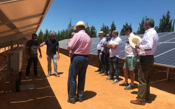 La Junta de Gobierno de la Comunidad de Regantes de Palos de la Frontera visita la planta fotovoltaica