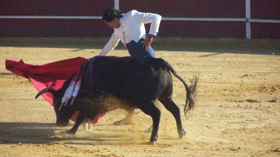Andrés Romero y Curro se erigen en triunfadores del Festival de Almonte