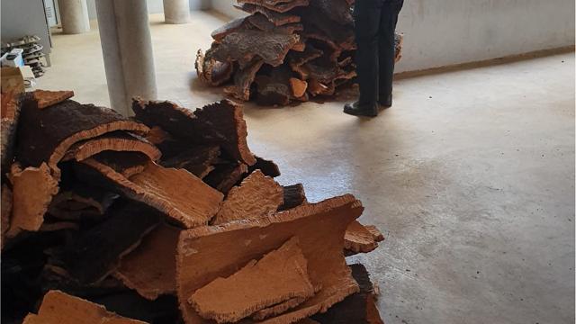 Investigan seis robos de corcho en Higuera de la Sierra y Aracena