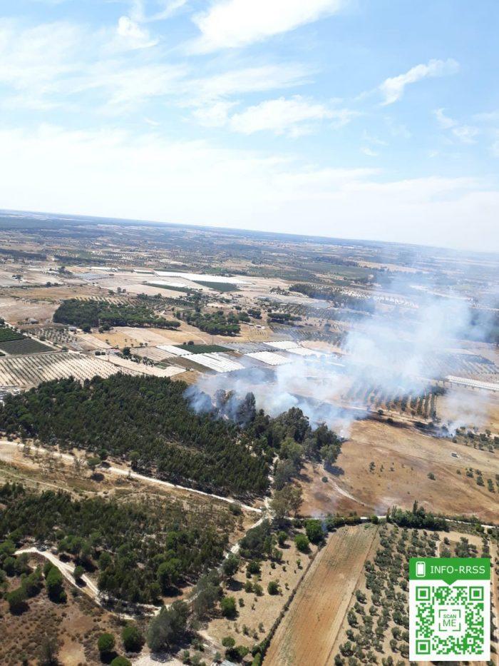Controlado un incendio registrado en las proximidades de la carretera de El Rocío
