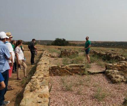 La Asociación 'Fernández de Landa' visita el yacimiento de Tejada la Vieja