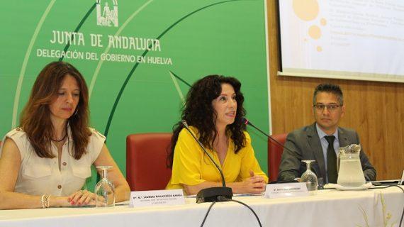 Se anuncia la formulación del V Plan de Voluntariado, que incidirá en el trabajo en red y el ámbito rural