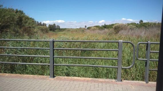Piden que se limpie el cauce del arroyo El Chorrillo de Aljaraque