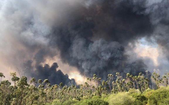 La disminución del viento facilita la actuación de los medios aéreos, que se retiran al llegar la noche en el incendio de Paterna