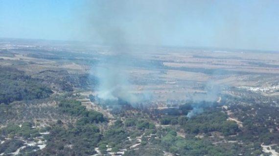 Trabajan en la extinción de un incendio forestal declarado en Lucena del Puerto