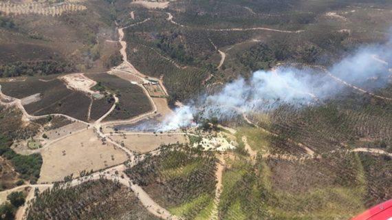 Un imputado por el incendio forestal de Paterna del Campo del pasado 12 de septiembre