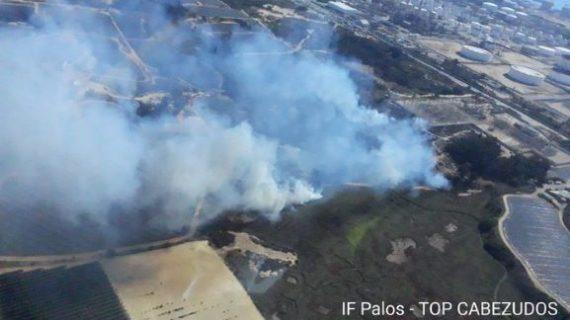 Estabilizado un incendio forestal declarado en el paraje de Estero Domingo Rubio de Palos