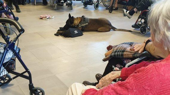 Los mayores de la residencia Orpea conocen los secretos de la Unidad Canina de la Policía Local de Aljaraque