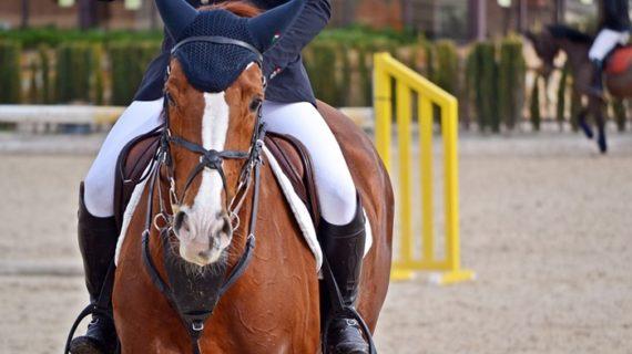 La Escuela Municipal de Equitación de Puebla de Guzmán comienza nuevo curso con récord de matriculados