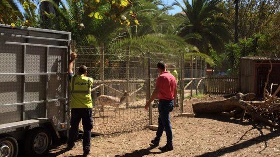 Concluye el traslado de los animales del antiguo zoológico de Ayamonte
