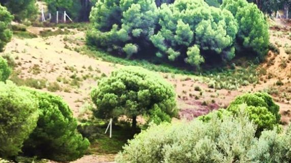 Un sederismo por la Ruta del Rebollón para descubrir Villablanca