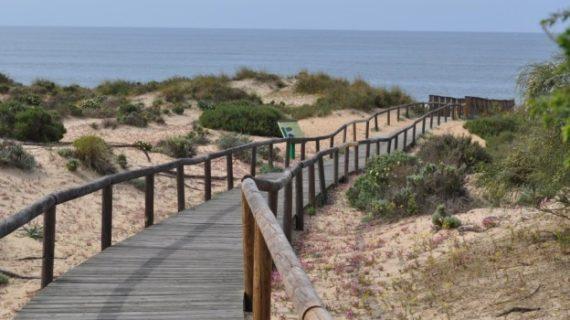 Descubrir el Condado y la Costa de Huelva haciendo senderismo, un placer para los sentidos