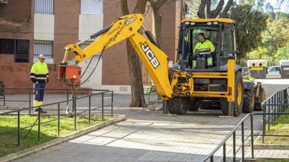 Plantados en Huelva alrededor de 750 árboles en las campañas de 2019