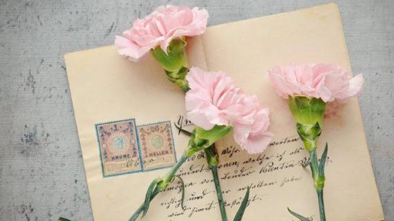 El Infanta Elena habilita un correo para enviar cartas a pacientes y profesionales que luchan contra el Covid-19