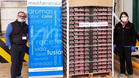 El sector de la fresa y los frutos rojos envía su primer camión a los hospitales de Huelva