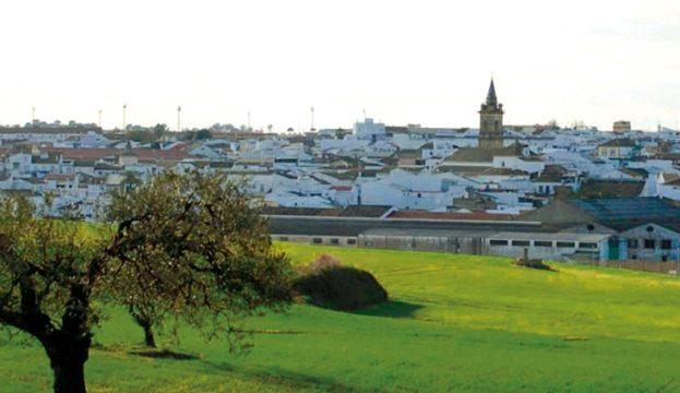 El grupo municipal socialista de Bollullos dona las asignaciones por concejal de dieciocho meses al Plan de Garantía Alimentaria por el coronavirus