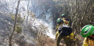 Extinguido el incendio forestal declarado ayer en Aracena